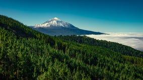 Zet Teide Tenerife op Stock Afbeeldingen