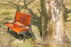 Zetel in park Royalty-vrije Stock Foto
