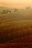 Zeuggebied, golvende bruine heuveltjes, landbouwlandschap, aardtapijt, Toscanië, Italië Stock Foto