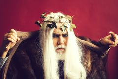 Zeus god with antlers. Zeus god or jupiter with antler and vine crown royalty free stock photo