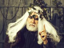 Zeus-mens met baard stock fotografie