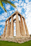 Zeus temple on green grass with palm leaves Stock Images