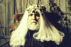 Zeus in white wig. Bearded senior man in long white wig vine crown as Zeus god in fur coat indoor on wooden background royalty free stock images