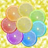 Zeven-bloem Royalty-vrije Stock Afbeeldingen