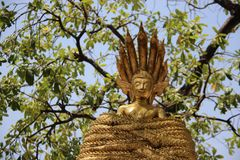 Zeven leidden Naga Omringde Gouden Buddhas royalty-vrije stock fotografie