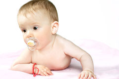 Zeven Maanden oud pasgeboren, geïsoleerdt op wit Royalty-vrije Stock Afbeelding