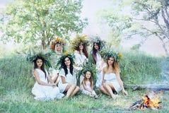 Zeven mooie meisjes in kronen Stock Afbeeldingen