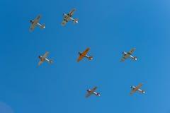 Zeven AT-6 Texans Vlieg Lucht Royalty-vrije Stock Foto