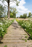 Zeveren Plancke in summer with flowers Stock Images