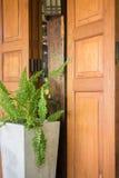 Zewnętrzny Drewniany drzwi I rośliny garnek Fotografia Royalty Free