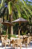 zewnętrzny palmowy restauracyjny drzewny tropikalny Fotografia Royalty Free