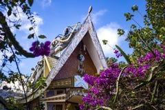 Zewnętrzny widok i nieprawdopodobna architektura Szalony dom Obraz Stock