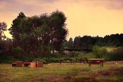 Zgłasza i krzesła stoi na gazonie przy ogródem i jeziorem w tle fotografia stock