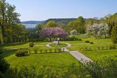 Zügellos im Garten der roten Villa Lizenzfreies Stockbild