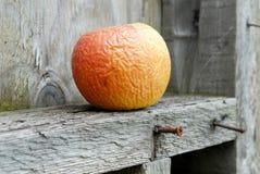 zgniłe jabłko Obrazy Royalty Free