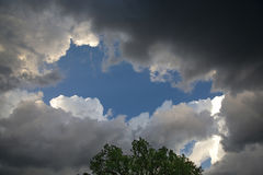 Zgromadzenie burzy chmury I zmierzchu światło Z drzewem Zdjęcie Royalty Free