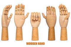 Zgromadzenie drewniane ręki w różnych pozycjach fotografia stock