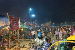 Zgromadzenie Indiański Hinduski sadhus - Gangasagar Mela Zdjęcie Royalty Free