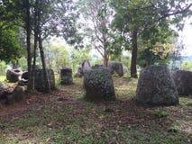 zgrzyta Laos równinę Zdjęcie Royalty Free