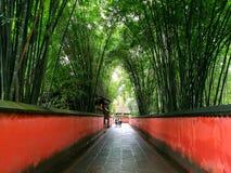 """ZhúlÃn för yÇ för ng för ¡ för qià för ng för ³ för ChéngdÅ """"wÇ"""" cà för hó u, hÔ 12/5000 Chengdu royaltyfri fotografi"""