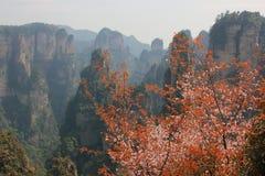 Zhāngjiājiè, China, Asia. Mountain Zhāngjiājiè Park, avatar, the nature of China, a UNESCO reserve royalty free stock photos