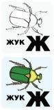 zh русского письма Стоковые Фотографии RF