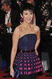 Zhang Ziyi Royalty Free Stock Photo
