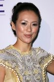 Zhang Ziyi Royalty Free Stock Photos