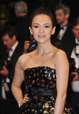 Zhang Ziyi Stock Photo