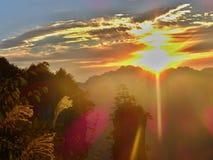 "Zhangjiajie ""Avatar""berget i det Hunan landskapet i Kina Royaltyfri Foto"