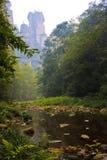 zhangjiajie Royaltyfri Fotografi
