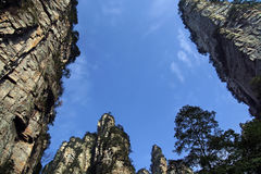 Zhangjiajie. China's Hunan Province Zhangjiajie Forest Park royalty free stock photography
