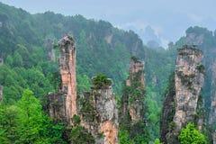 Zhangjiajie berg, Kina royaltyfri foto