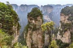 Zhangjiajie cliff mountain stock photography