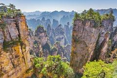 Zhangjiajie Forest Park arkivfoton