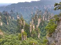 Zhangjiajie Forest Park - Cina nazionali - montagne di hallelujah fotografia stock libera da diritti