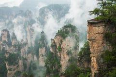 Zhangjiajie Forest Park. Gigantic pillar mountains rising from t. He canyon. Hunan province, China Stock Photos