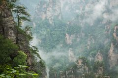 Zhangjiajie Forest Park. Gigantic pillar mountains rising from t. He canyon. Hunan province, China Royalty Free Stock Photos