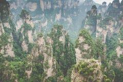 Zhangjiajie Forest Park. Gigantic pillar mountains rising from t. He canyon. Hunan province, China Royalty Free Stock Photo