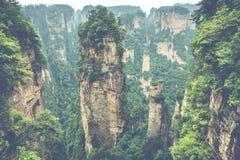 Zhangjiajie Forest Park. Gigantic pillar mountains rising from t. He canyon. Hunan province, China Stock Photography
