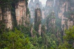 Zhangjiajie Forest Park Gigantiska pelarberg som stiger från t Arkivbilder