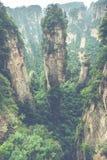 Zhangjiajie Forest Park Gigantiska pelarberg som stiger från t Royaltyfri Bild