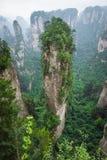 Zhangjiajie Forest Park Montanhas gigantescas da coluna que aumentam de t imagem de stock royalty free
