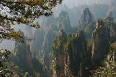 Zhangjiajie Forest Park Montanhas gigantescas da coluna que aumentam da garganta Montanha de Tianzi Província de Hunan, China imagem de stock royalty free