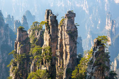 Zhangjiajie Forest Park national Chine images stock