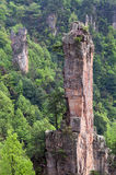 Zhangjiajie Forest Park national, Hunan, Chine image libre de droits
