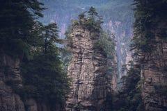 Zhangjiajie Forest Park nazionale, Cina Fotografia Stock Libera da Diritti