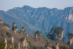 Zhangjiajie Forest Park nazionale nella roccia generale Qunfeng di Tianzishan del Hunan Fotografia Stock