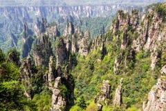 Zhangjiajie Forest Park Säulenberge, die von der Schlucht steigen Wulingyuan, China stockfotografie