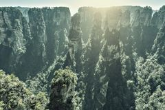Zhangjiajie Forest Park at sunrise time. Royalty Free Stock Images